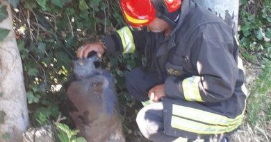 Bruciano alcune baracche in un terreno a San Giusto: in una c'era una bombola di gpl